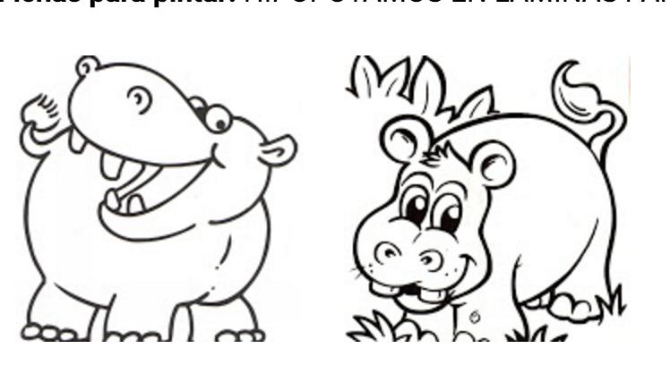 dibujos de hipopotamos