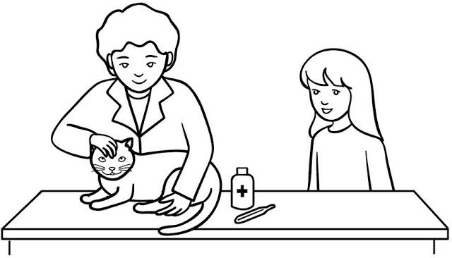 dibujo veterinario